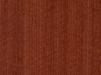 Vasto legno legal wood from the earth of africa for Essence de bois exotique